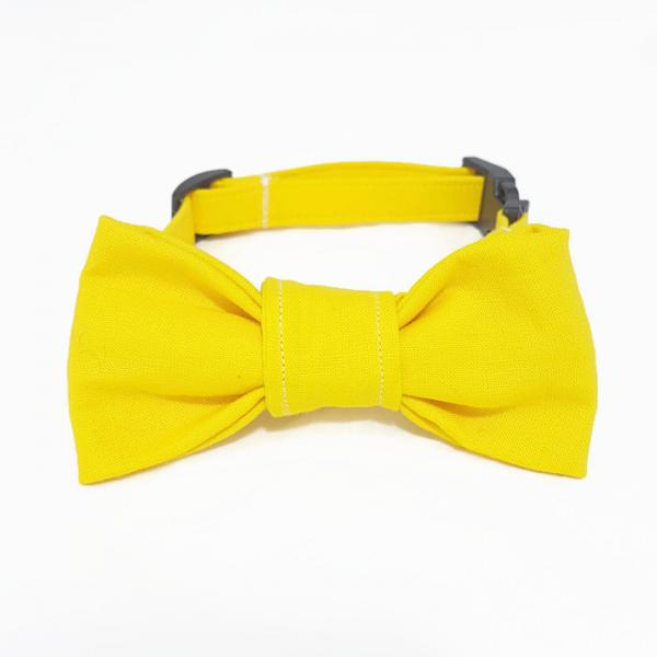 Dog Collar with Bow Tie - Walking on Sunshine