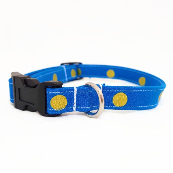 SALE: Dog Collar - Golden Dots - Blue