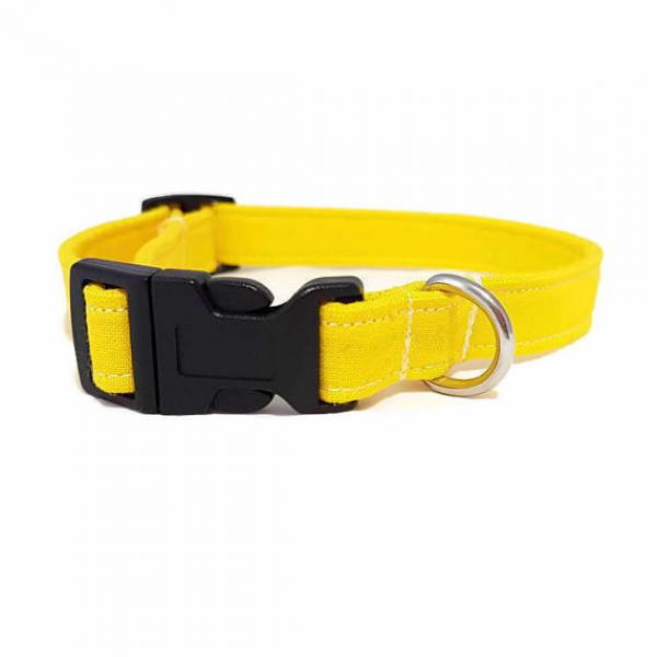 Dog Collar - Walking on Sunshine