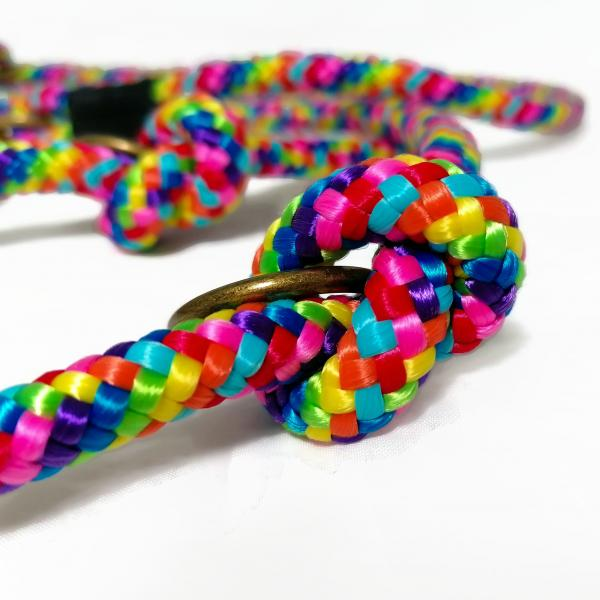 Rope Leash - Rainbow - PPM